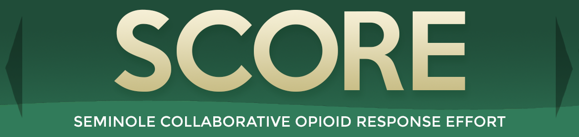 seminole collaborative opioid response efforts
